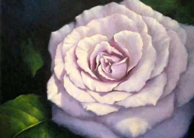 Lilac Rose with Leaf 70 x 82cm